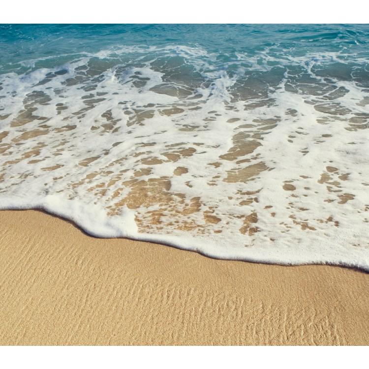 가까운바다