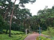 자연휴양림